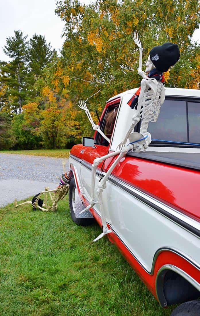 Vintage Ford truck full of Halloween skeletons.