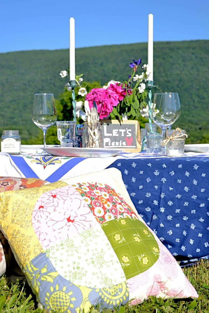 Pillows and picnic pallet table.