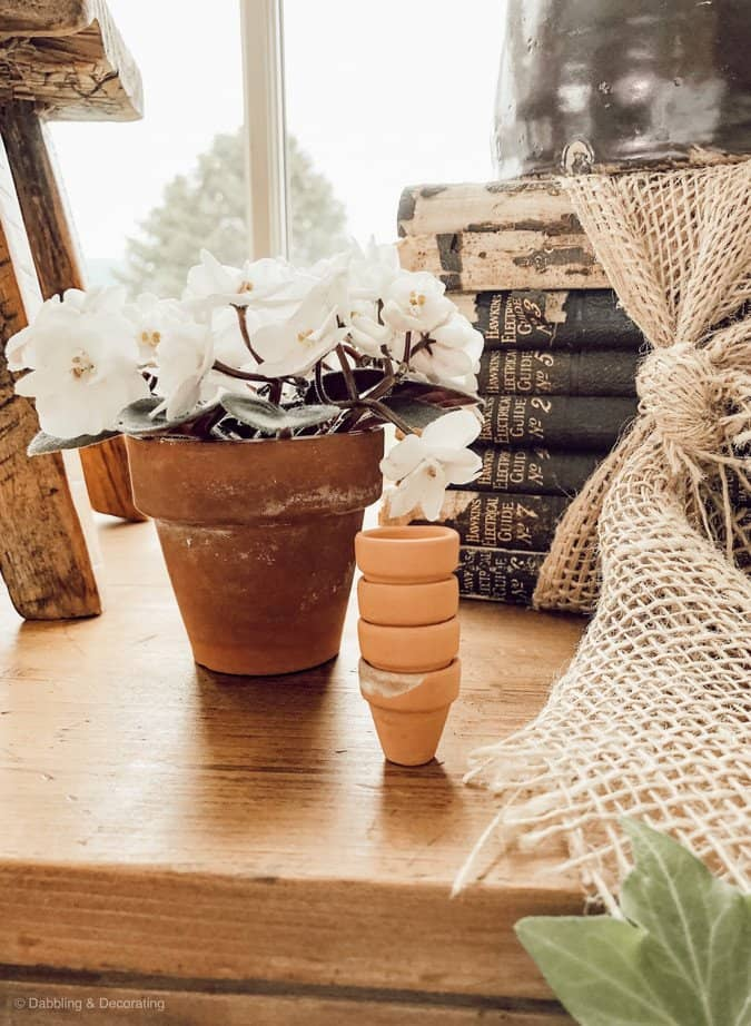 Spring Greenery, Terracotta Pots and a Repurposed Card Catalog