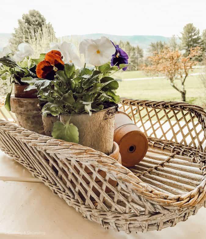 Garden Terracotta Cupboard