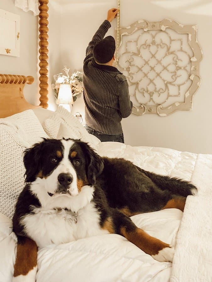 Cozy Master Bedroom Makeover with Bernese Mountain Dog.