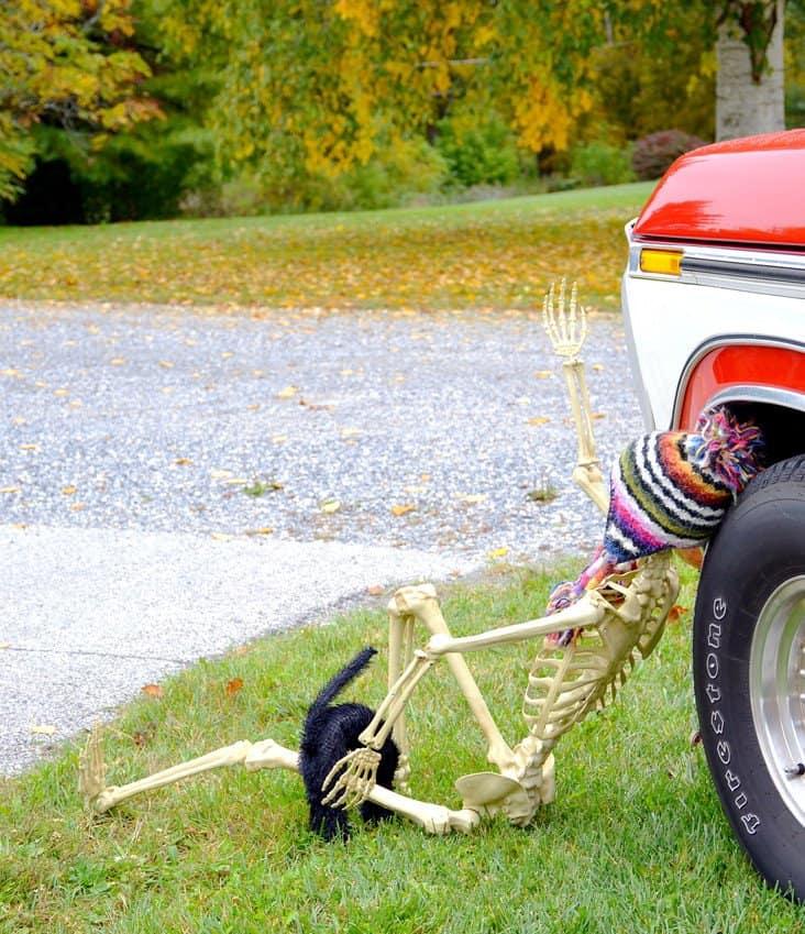 Halloween skeleton under vintage truck tire.