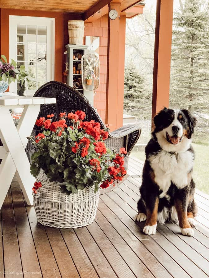 Vintage Porch Decor and Gardener's Terracotta Cupboard