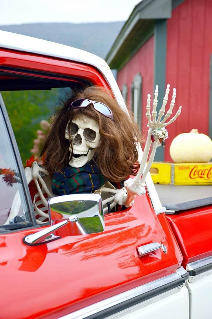 Female Halloween skeleton waving out of vintage truck