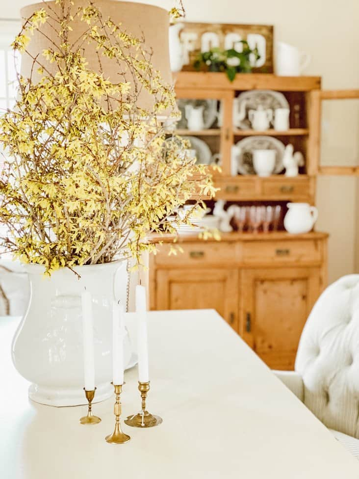 FORCING FORSYTHIA BRANCHES INTO A BEAUTIFUL SPRING FLOWER ARRANGEMENT