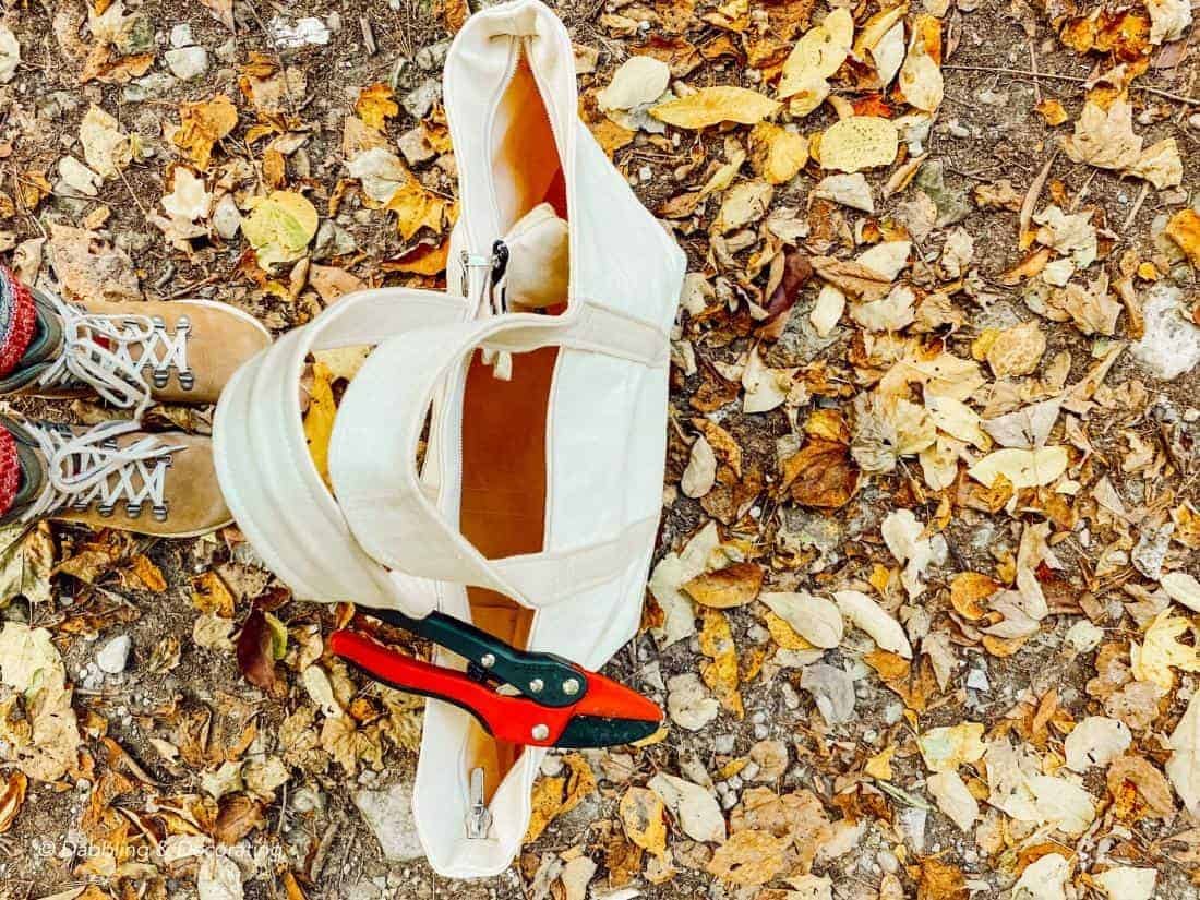 a bag, boots, and leaves