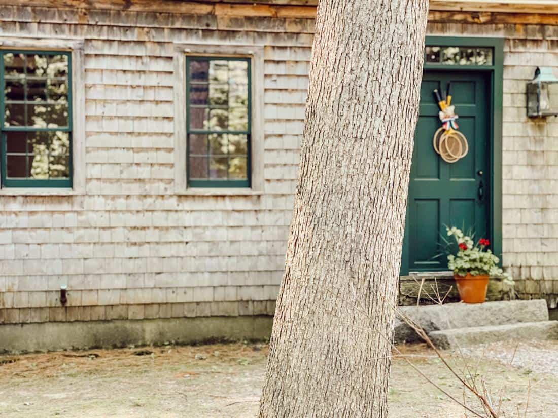 cedar shake siding and a tree