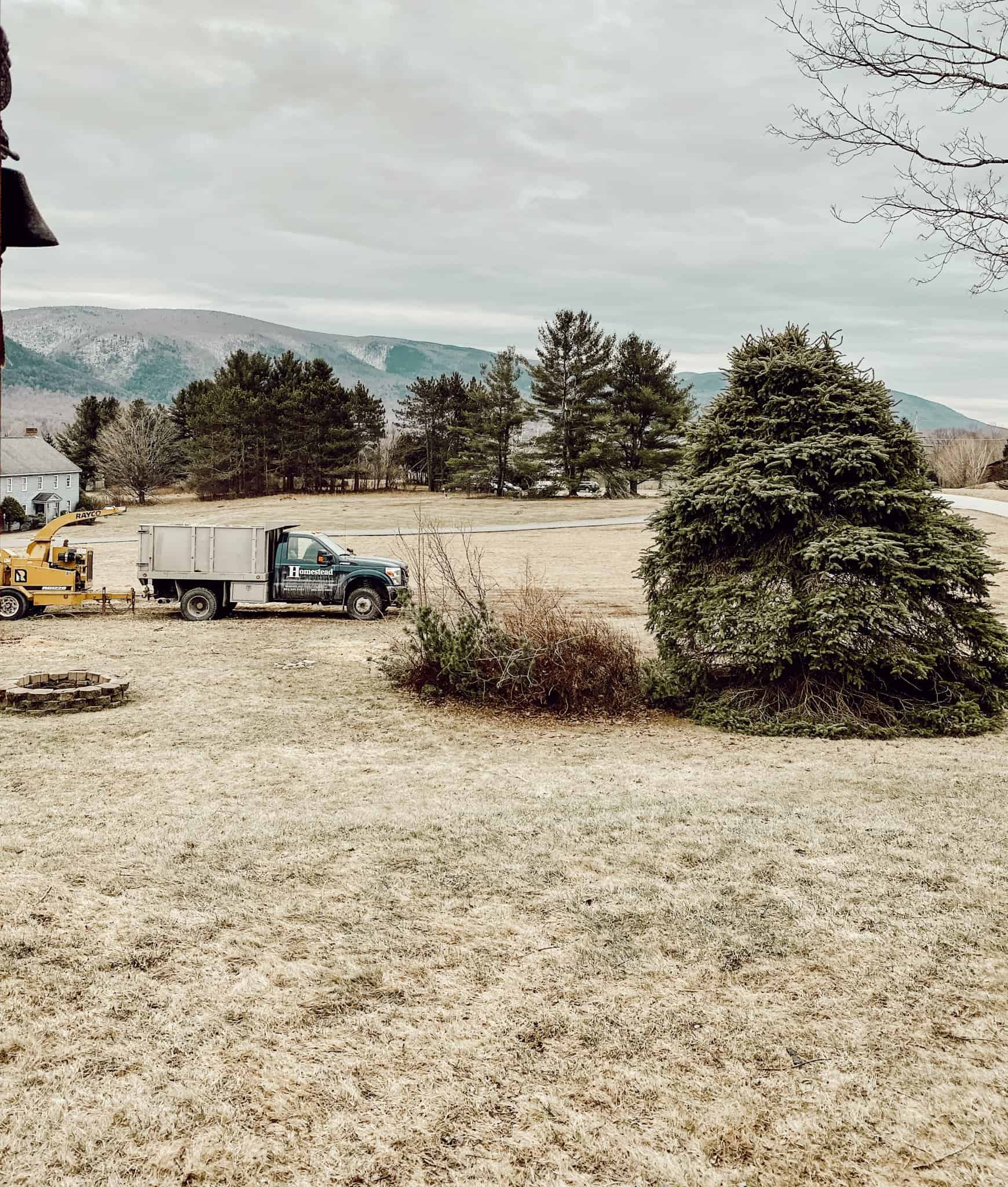 front yard with mountains in the background