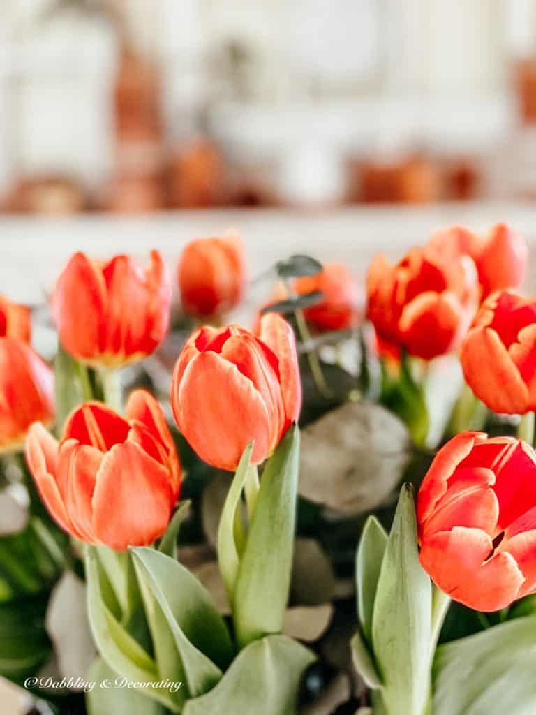 bouquet of spring orange tulips