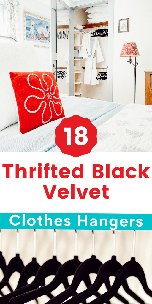 18 Thrifted Black Velvet Hangers