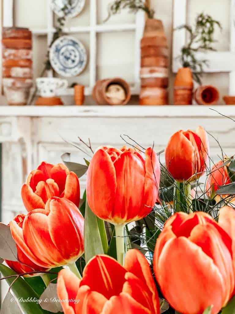 Orange tulip bouquet with terracotta pots.
