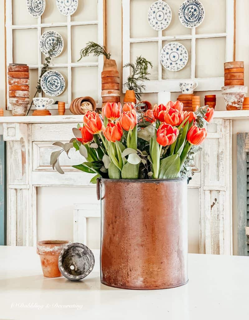 Spring Tulips and Terracotta pots.