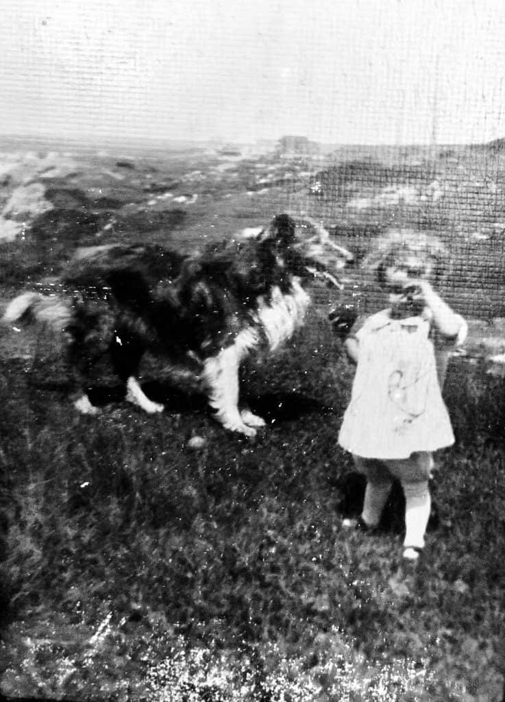 Shirley Couser at the Nubble at two years old with collie dog.  Coastal Maine Heritage - Embracing My Roots