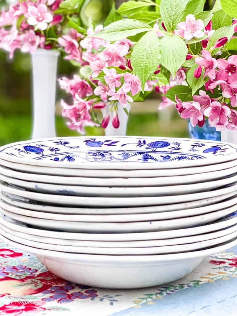 blue and white frugal dishes