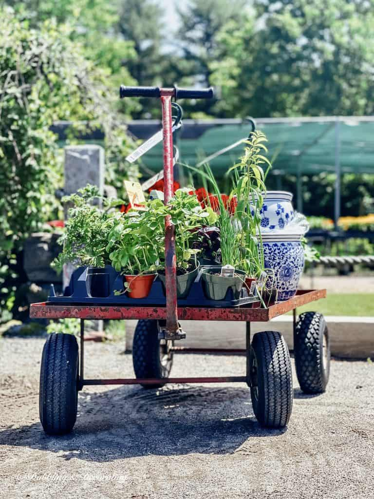 Thrift Vintage Stores Near Me. Cart filled with garden supplies.