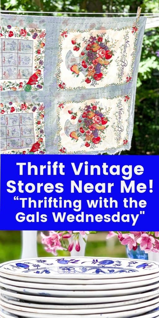 Thrift Vintage Stores Near Me