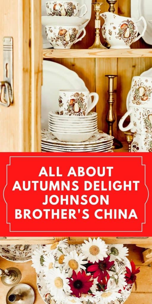 all about Autumn's Delight Johnson Brother's China