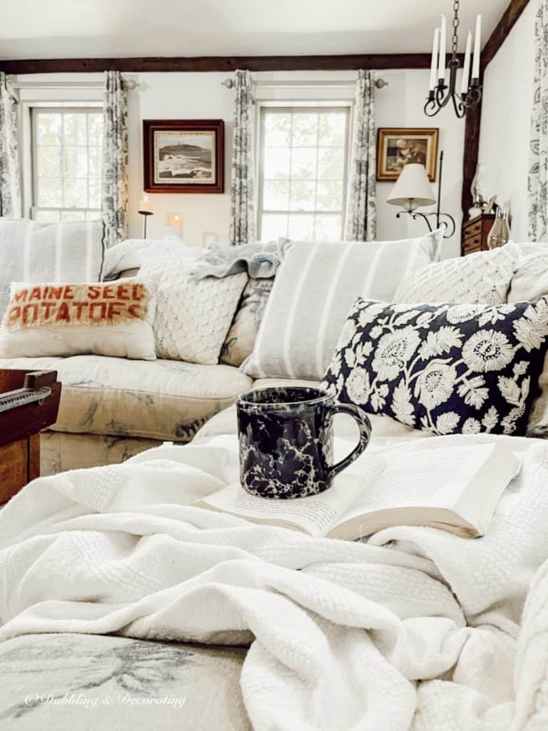 Cozy Sectional Couch