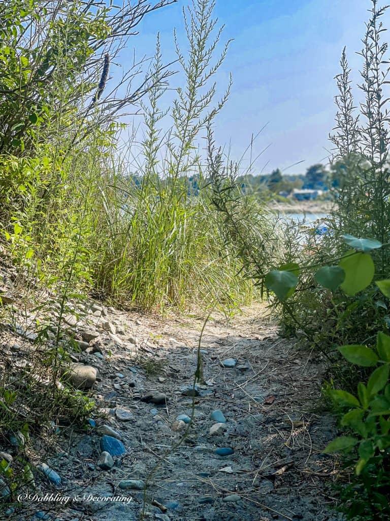 Summer Beach Pathway