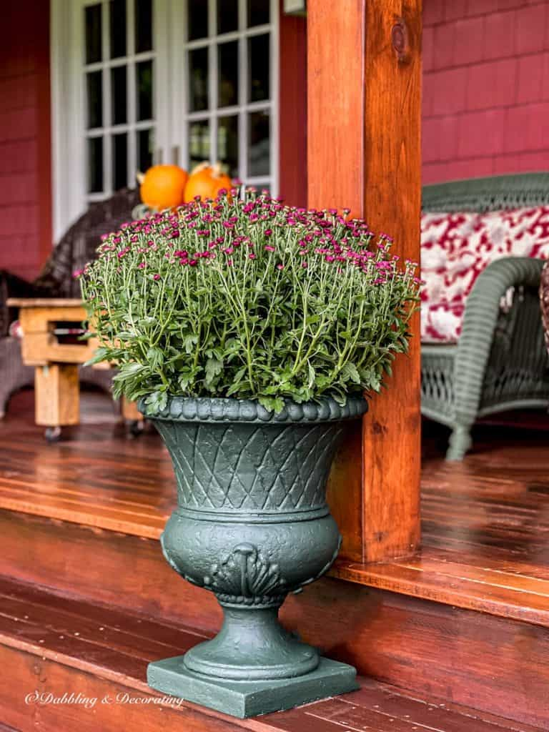 Fall  Planter with Mums
